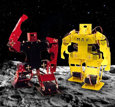 Activity-2_Lunar-Robot