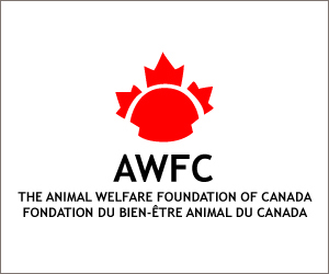 Charity-05-The-Animal-Welfare-Foundation-of-Canada copy